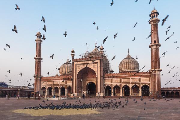India-Holi-Photo-Tour-That-Wild-Idea-21