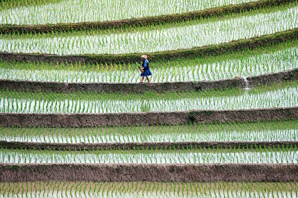 Photography_Tour_Northern_Vietnam