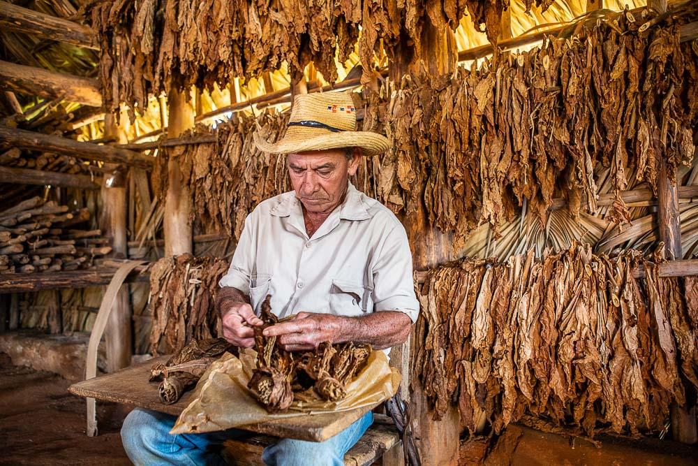 A tobacco farmer making a Cuban cigar in Vinales, Pinar del Rio Province, Cuba